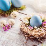Frohe Ostern wünscht Fliesen-Traum & Malerfachbetrieb Marko Volkmar